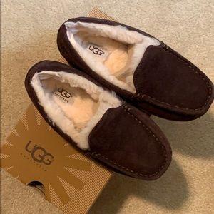 Boys Ugg's Ascot Slippers